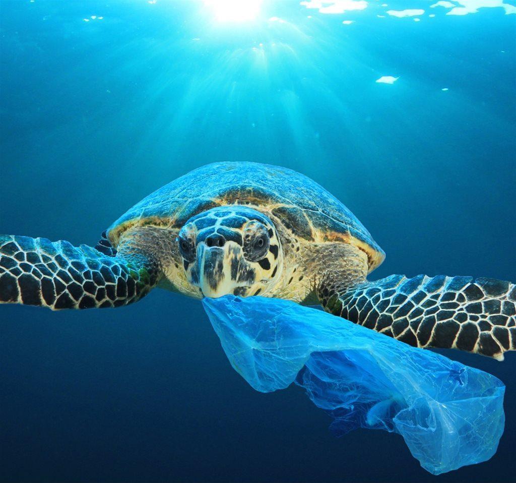 Encore Environment Environmental Consultancy