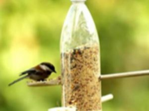 A plastic bottle and wooden spoons made into a bird feeder