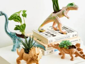 Old toy dinosaurs made into mini indoor planters