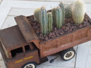 Old toy truck used as a mini tropical plant holder