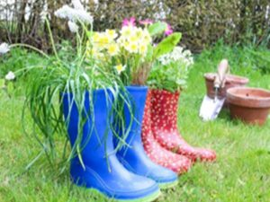 Old wellies used for planting